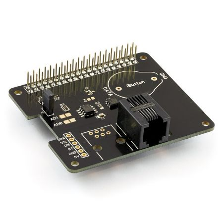 1 Wire Pi Plus